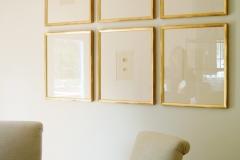 Egg prints framed as a group